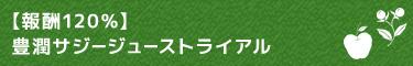 【報酬100%】豊潤サジージューストライアル