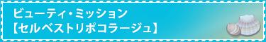 ビューティ・ミッション【セルベストリポコラージュ】